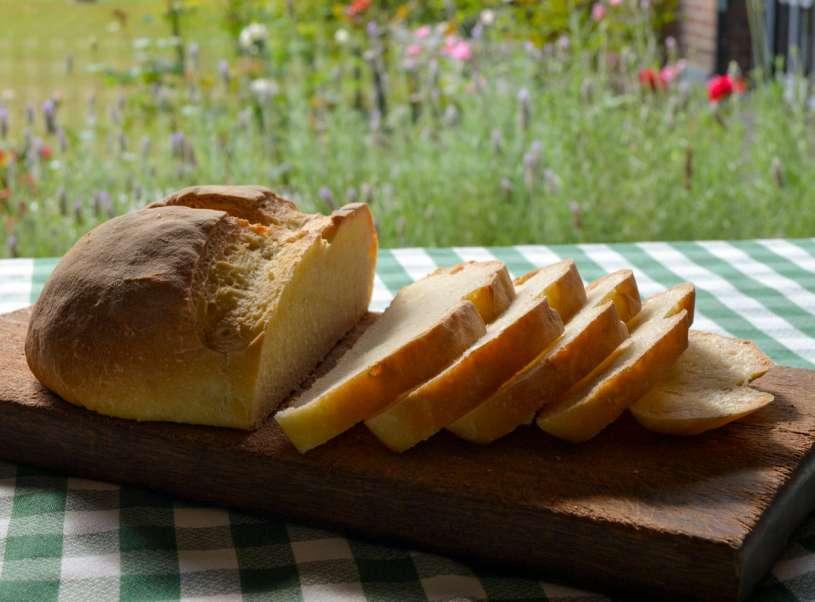 panederia13 horno pan